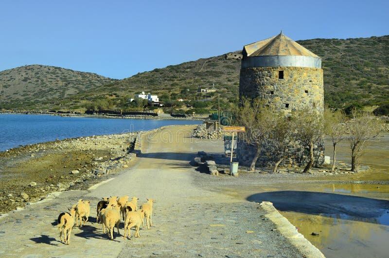 Grecia, isla de Crete imagen de archivo