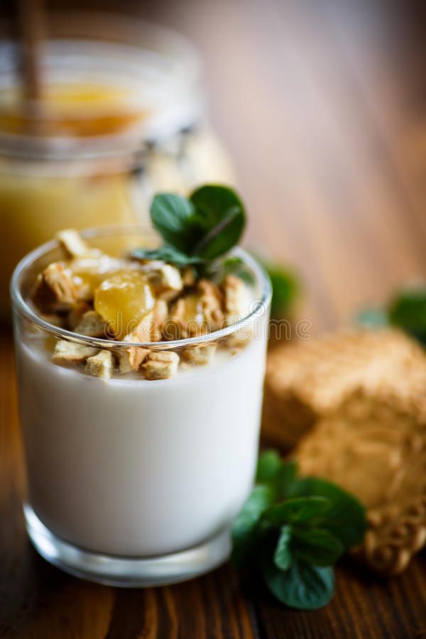Grecki jogurt z miodem i ciastkami zdjęcia stock