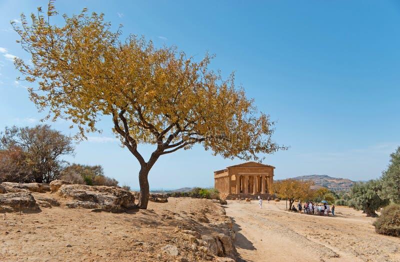 Greckie świątynie w Sicily zdjęcia royalty free