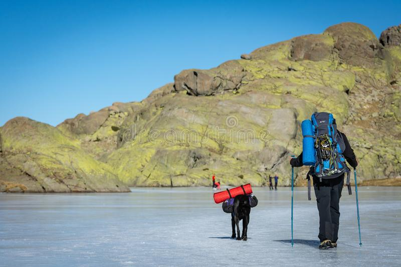 Gredos, Spain. 12-January-2019. Trekker and his dog walking above frozen lake during a sunny winter day royalty free stock photo