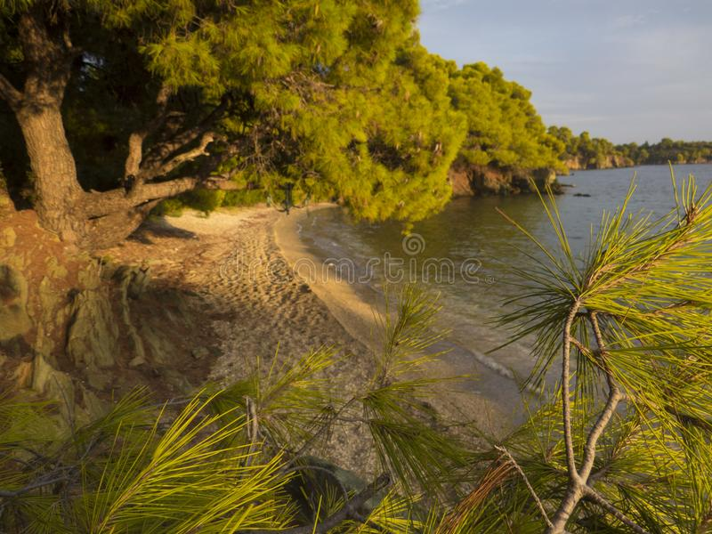 Greece beach on sunset light. Evening in the nature.   Fascinating landscape. Greece beach on sunset light. Evening in the nature.   Fascinating landscape into stock images