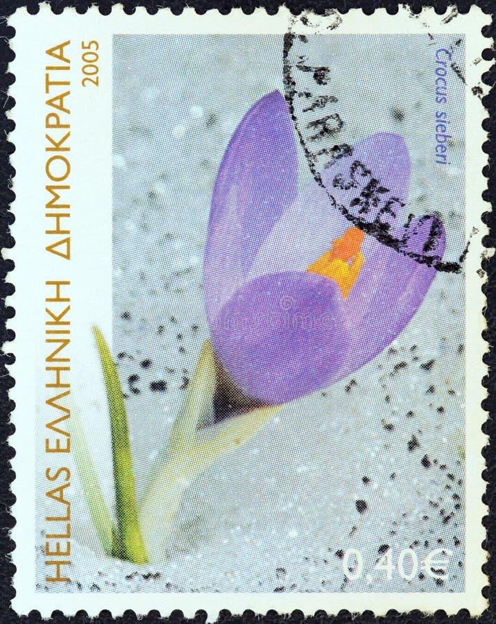 GREECE - CIRCA 2005: A stamp printed in Greece shows Cretan crocus Crocus Sieberi, circa 2005. royalty free stock photography