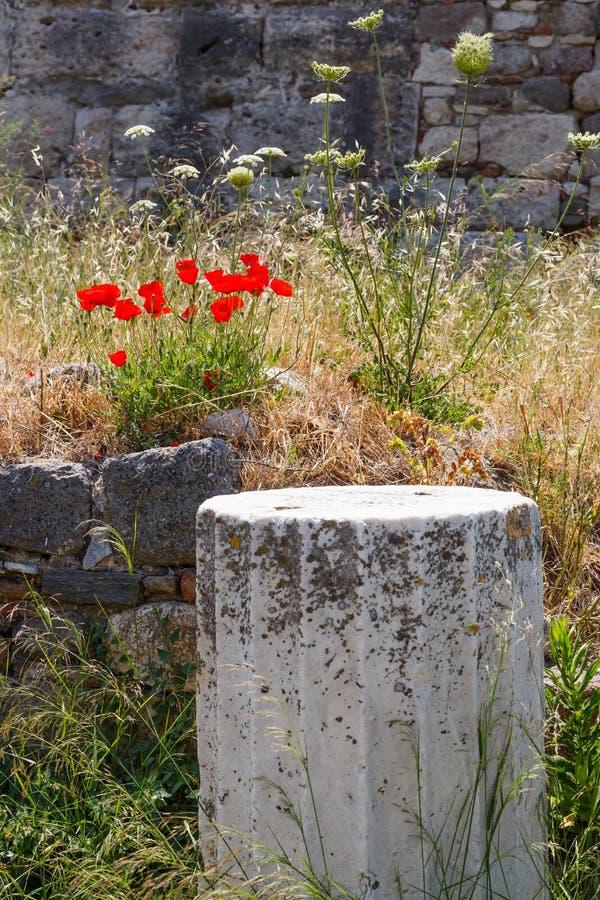 greece kos fördärvar royaltyfri bild