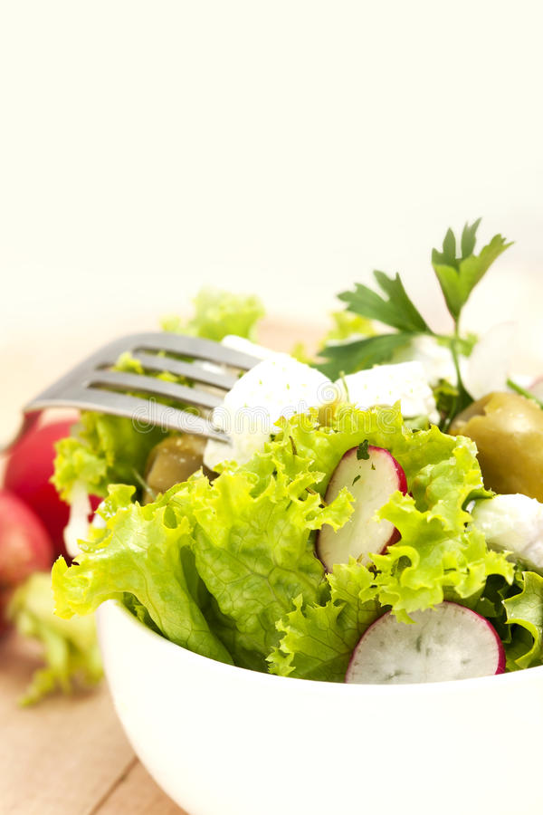 Download Greek salad stock photo. Image of lettuce, bowl, healthy - 40503976