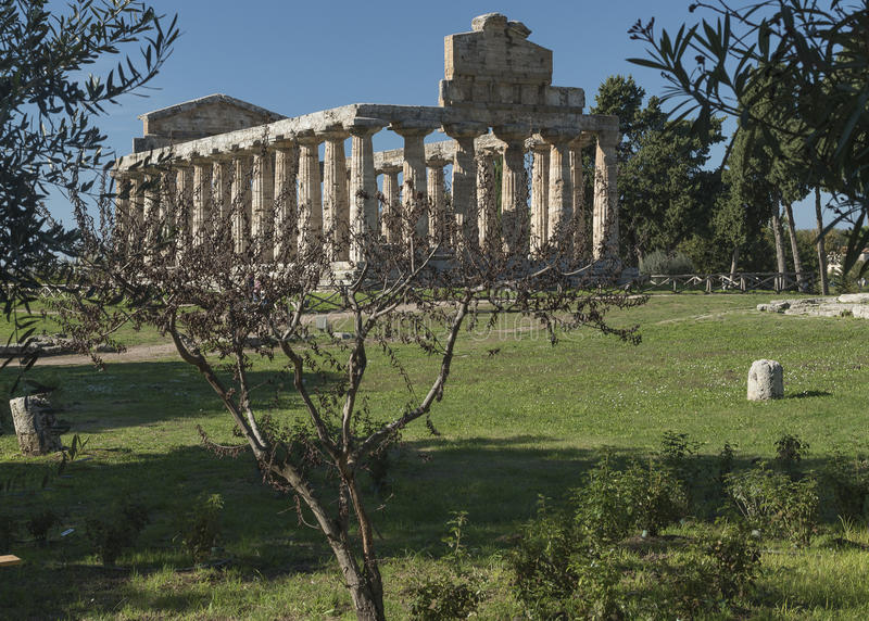 Greek Temple of Ceres, Paestum, Cilento Italy stock photos