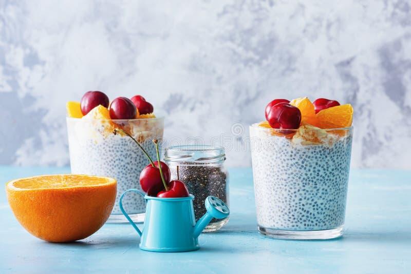 Greek Yogurt Dessert with Chia Seeds Superfood royalty free stock photo