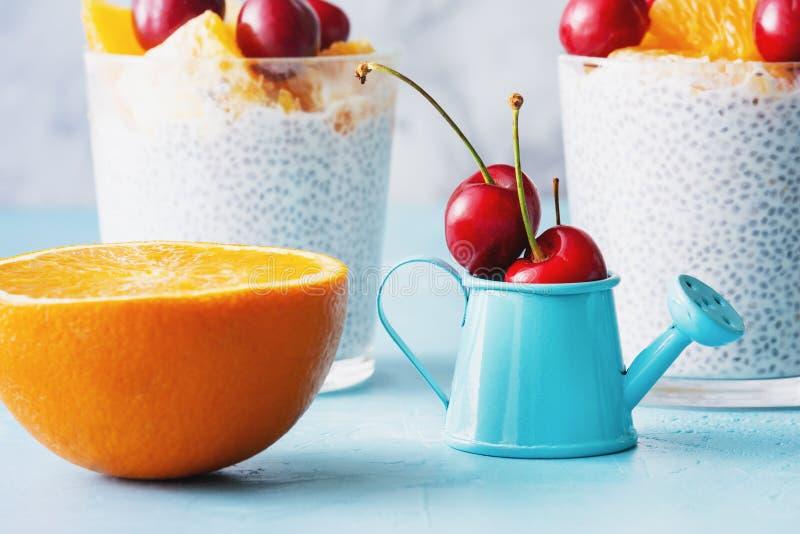 Greek Yogurt Vegan Dessert with Chia Seeds Closeup stock image