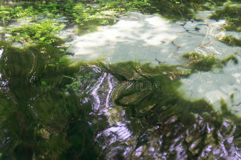 Green abstract background. Water surface with colorful light reflections. Texture of water stock photo