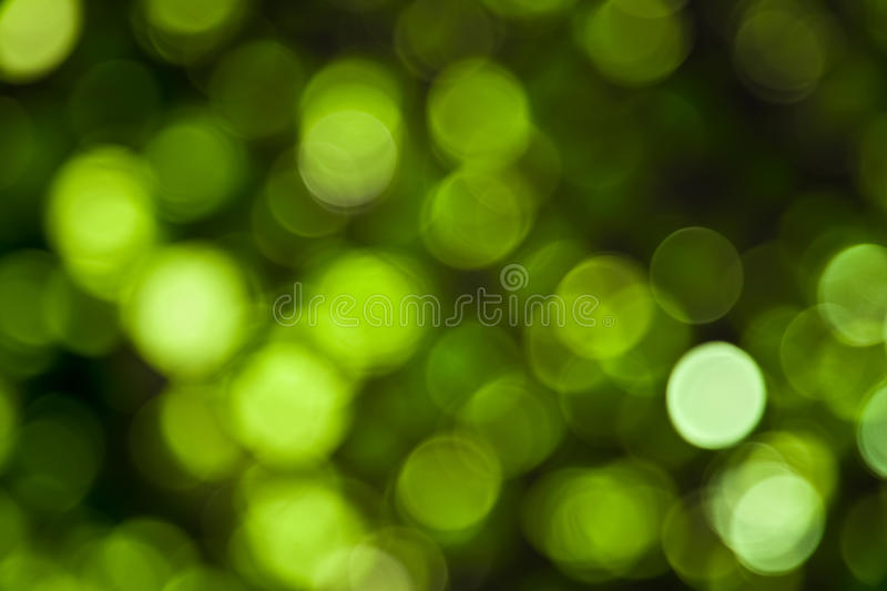 Green Abstract Lights. Unfocused Light background Series royalty free stock photography