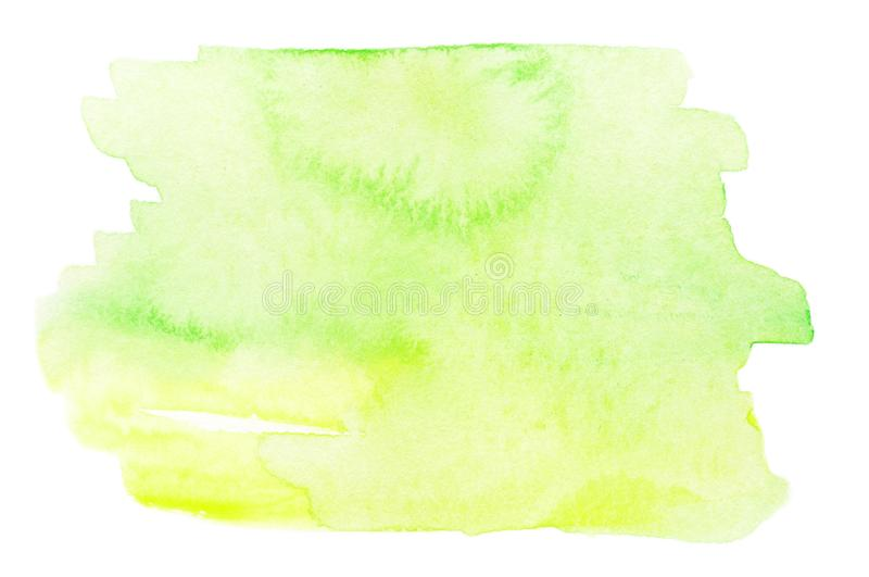 Green Abstract watercolor splash. Wet Watercolour drop for your vector illustration