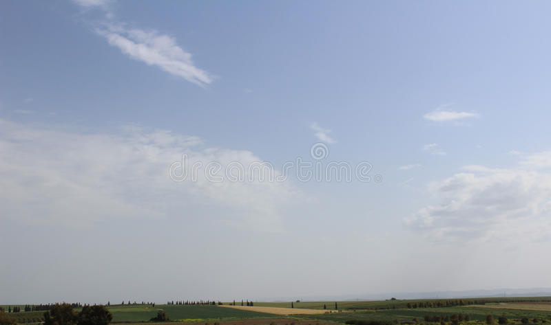 Green agriculture Field with sky royalty free stock photo