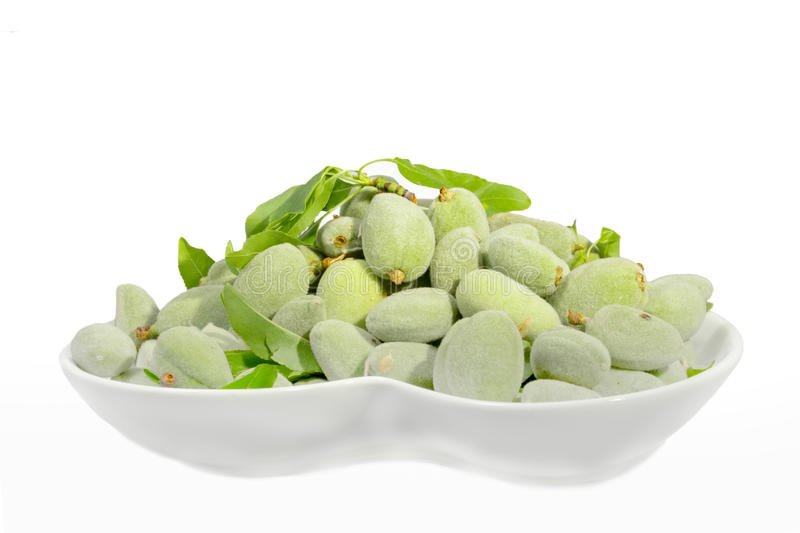 Green almond stock images
