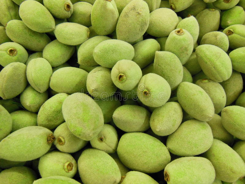 Green Almonds royalty free stock photography