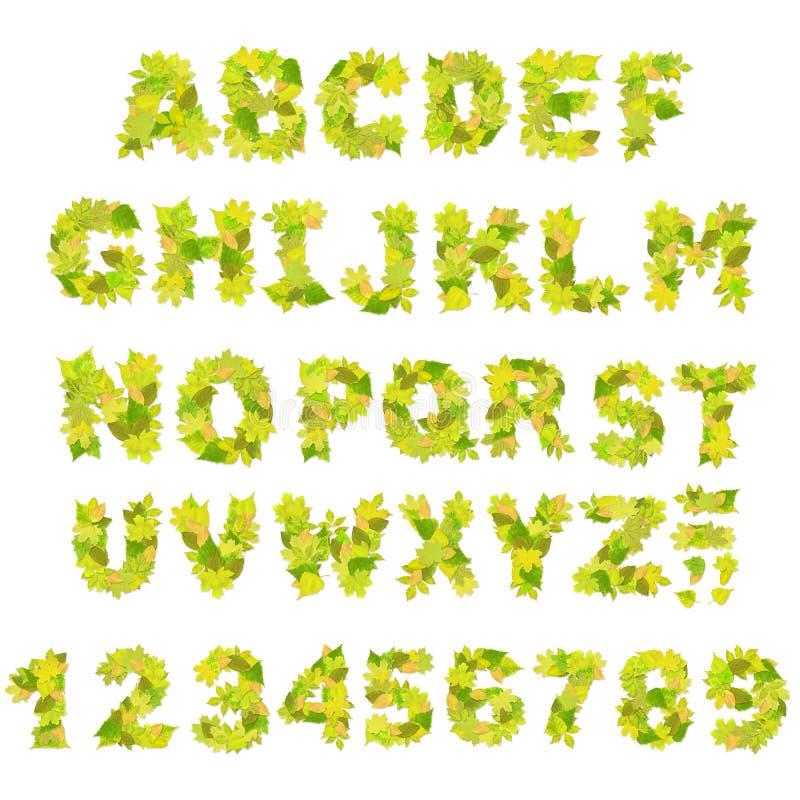 Download Green alphabet stock illustration. Image of design, part - 13332480