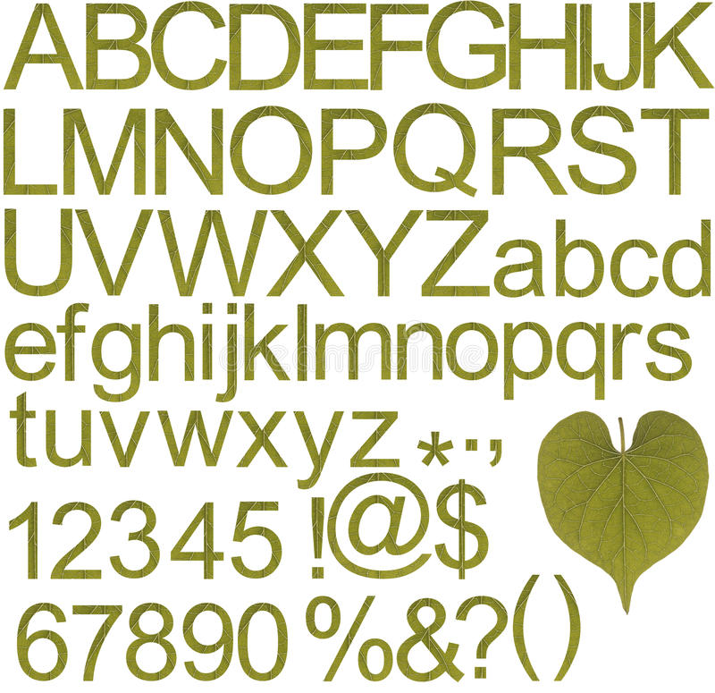 Green alphabets, numbers and special characters stock photos