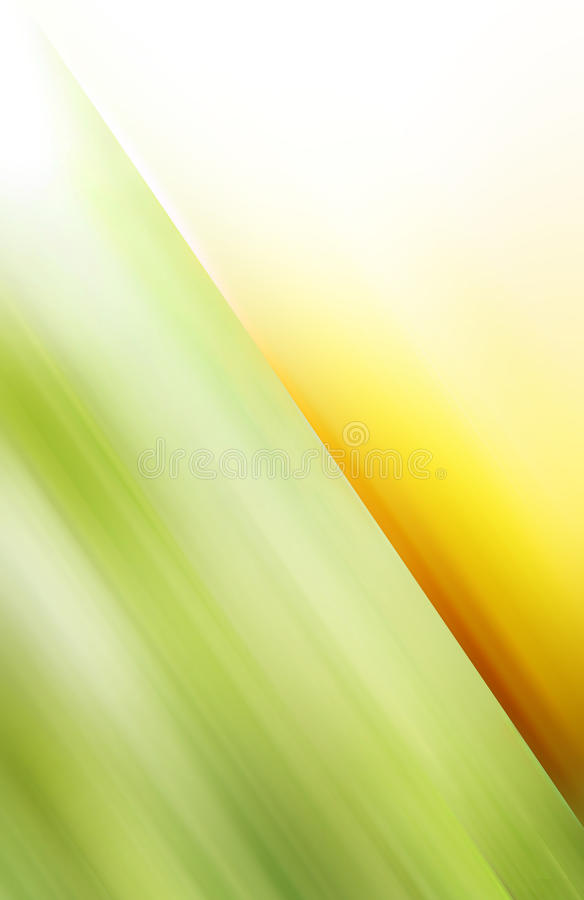 Free Green And Yellow Motive Royalty Free Stock Image - 10745536