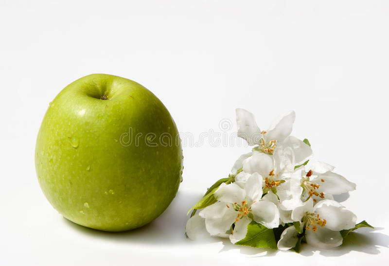 Download Green Apple Stock Photography - Image: 19699602