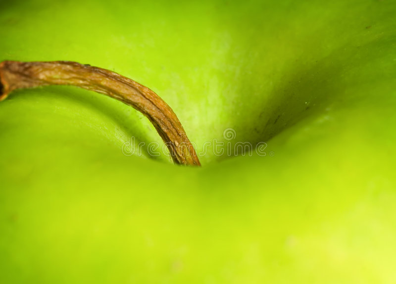 Download Green Apple Stock Image - Image: 2320691