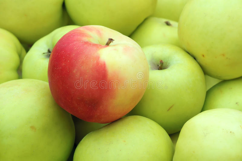 Green apple. The close-up of green apple stock photos
