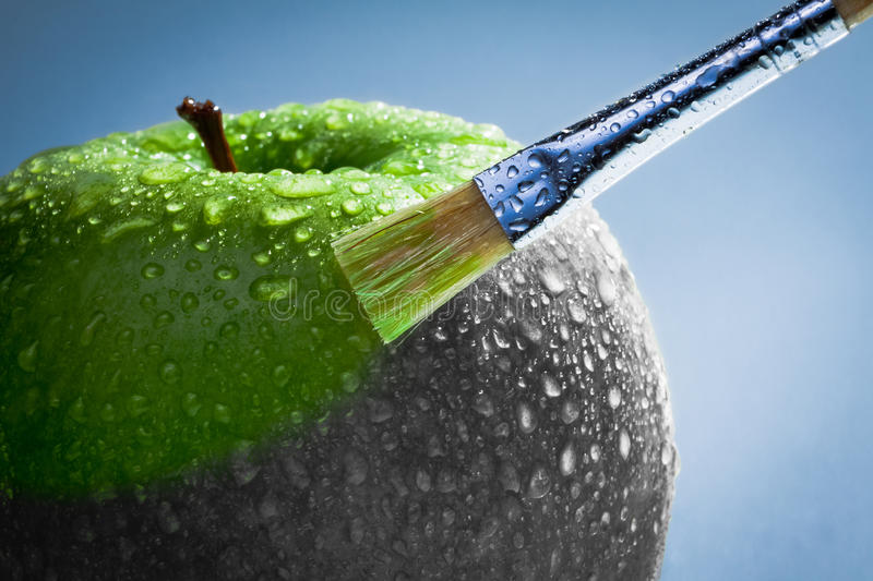 Download Green apple as art concept stock image. Image of work - 18831123