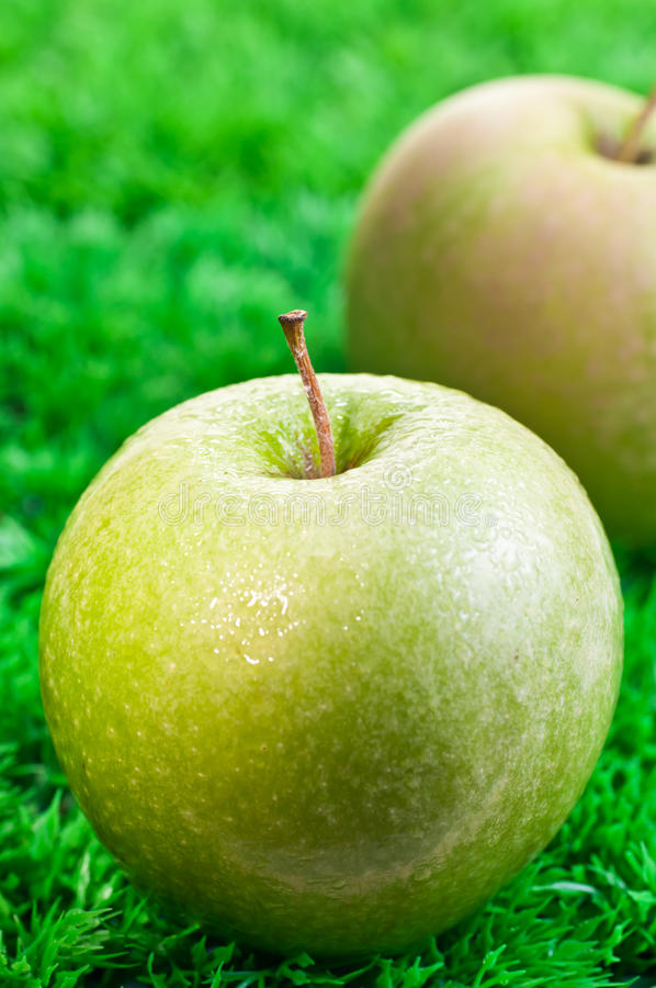 Download Green Apple Close Up With Apple At Background Stock Photo - Image: 22208406