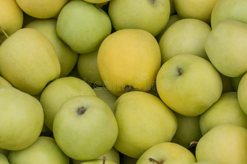Green apple Raw fruit and vegetable backgrounds overhead perspective, part of a set collection of healthy organic fresh produce royalty free stock images