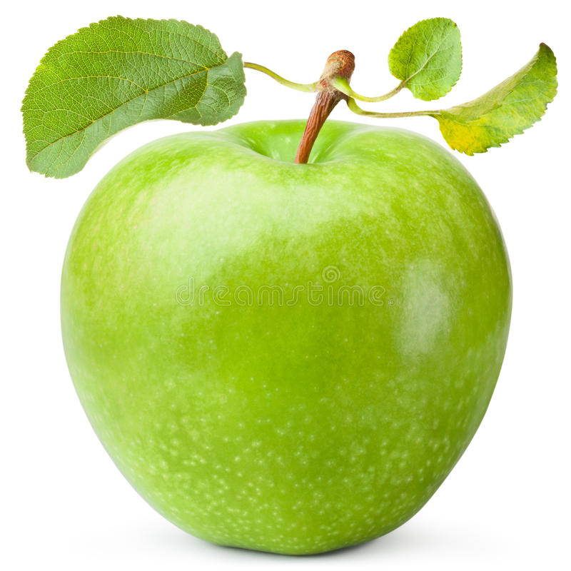 Green apple with three leaves stock image