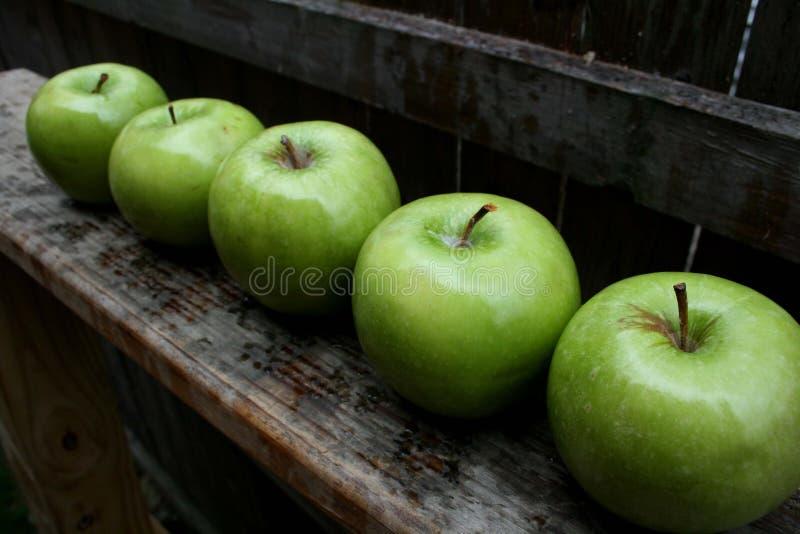 Green apples #2 stock photos