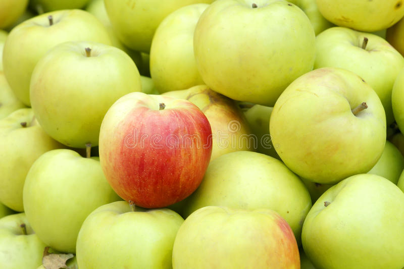 Green apples. The background of green apples stock images