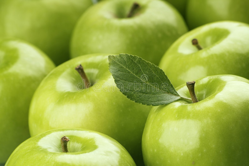 Download Green Apples stock image. Image of eatable, natural, juicy - 5780579