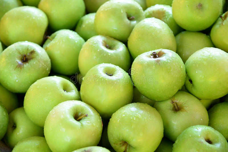 Green apples. Background of green apples covered with drops of water royalty free stock photo
