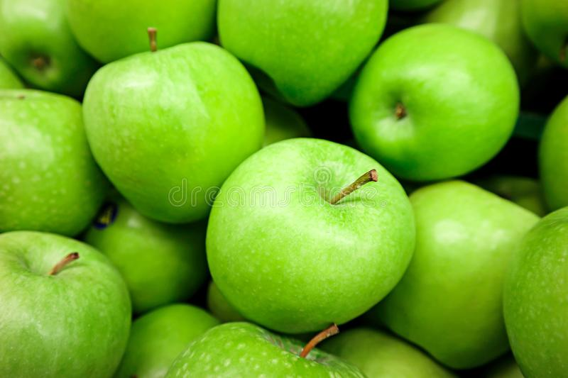 Green Apples. The round fruit of a tree of the rose family, which typically has thin red or green skin and crisp flesh. Many varieties have been developed as stock photo