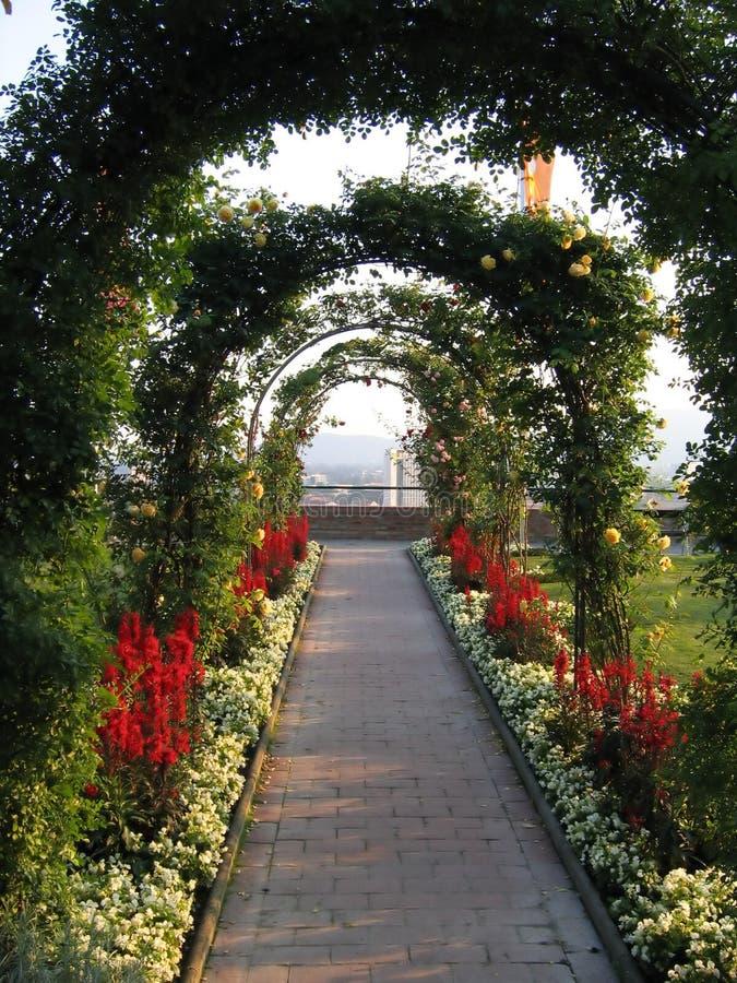 Download Green arch stock image. Image of graz, garden, austria - 182253