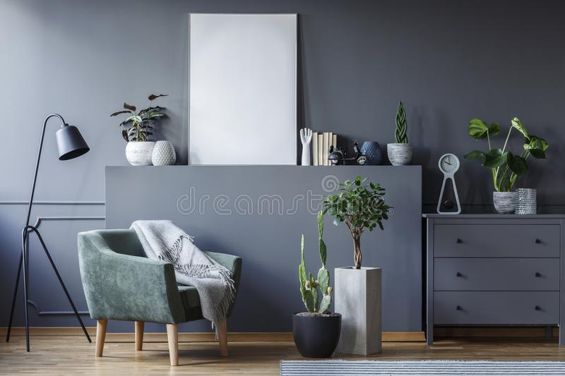Green armchair between black lamp and plants in grey flat interior with mockup of poster. Real photo royalty free stock photos