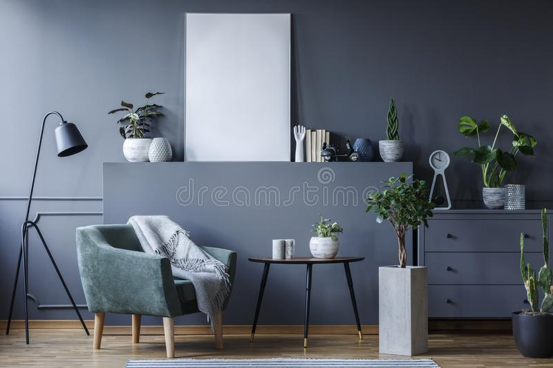 Green armchair next to black table and plant in living room interior with mockup of poster. Real photo royalty free stock images
