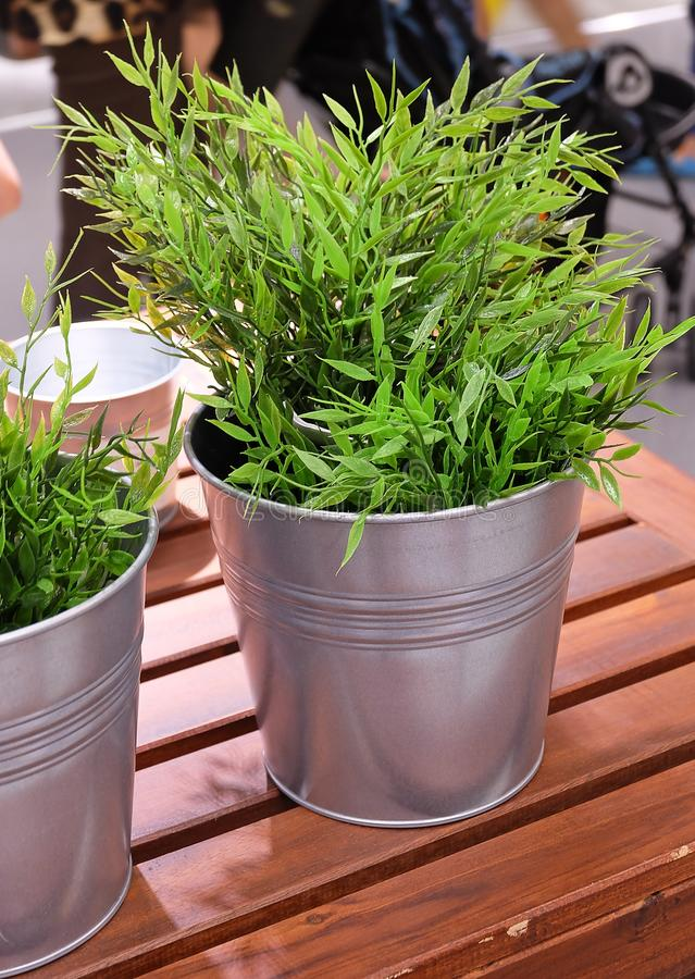 Green Artificial Plant in A Metal Pot. Artificial Green Plant or Artificial Plant in A Metal Pot for Home and Office Decoration without The Care stock photos