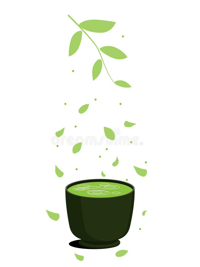 Green Asian matcha tea in a cup. Petals and leaves match. Green healthy fitness tea. On a white background royalty free illustration