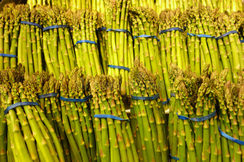 Green Asparagus royalty free stock images