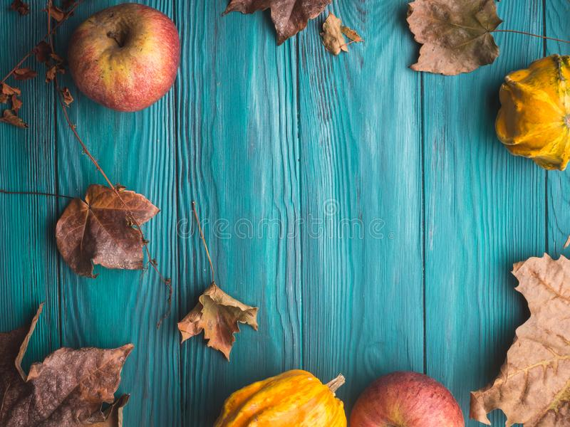 Green autumn background with pumpkin, leaves. Moody green autumn background with pumpkin, apples, yellow leaves. Fall still life flat lay. Copy space frame stock images