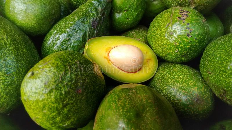 Green Avocados, one halved. Bunch of green avocados. One of these healthy fruits is halved that the stone and the pulp are visible royalty free stock photos