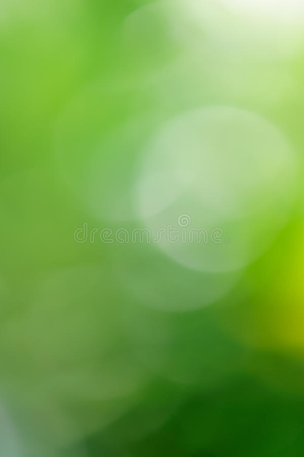 Download Green background stock image. Image of lawn, back, macro - 14214391