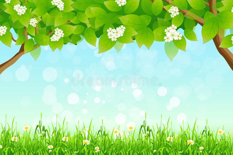 Download Green Background With Branches Of Trees And Grass Stock Vector - Image: 25161891