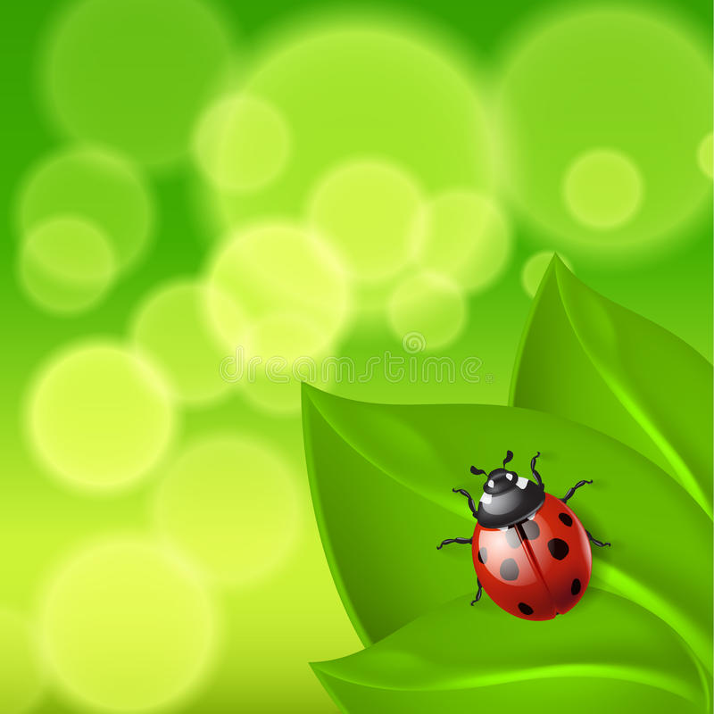 Download Green Background With Ladybird Stock Vector - Image: 39245880