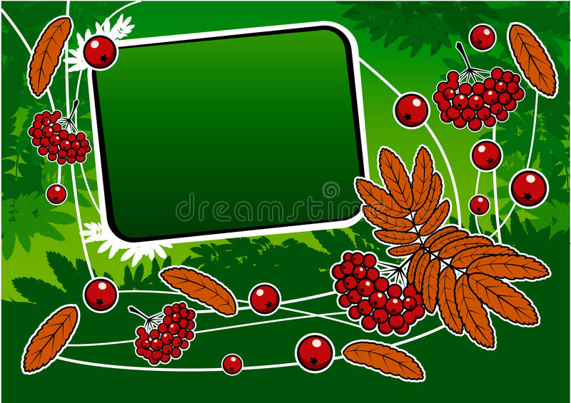 Download Green Background With Red Ashberry And Banner Stock Photos - Image: 11093703