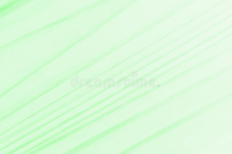 Green background for text or pictures vector illustration
