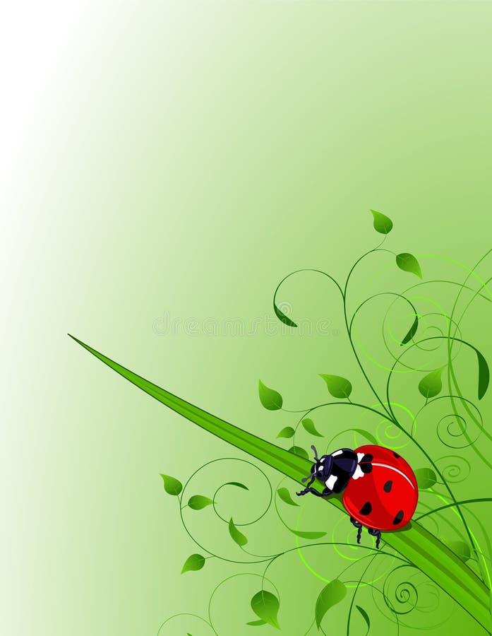Free Green Background With Ladybug Stock Images - 18194954