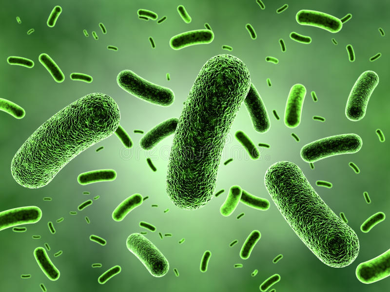Download Green Bacteria Colony Stock Image - Image: 35122891