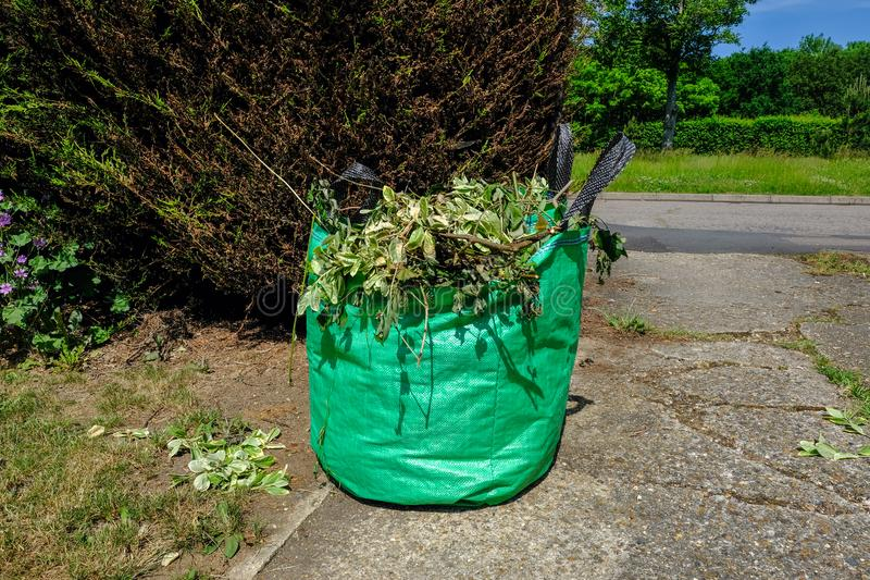 Green bag full of garden waste. Green bag full of garden cuttings waiting for the Council to pick up on a recyling collection stock images