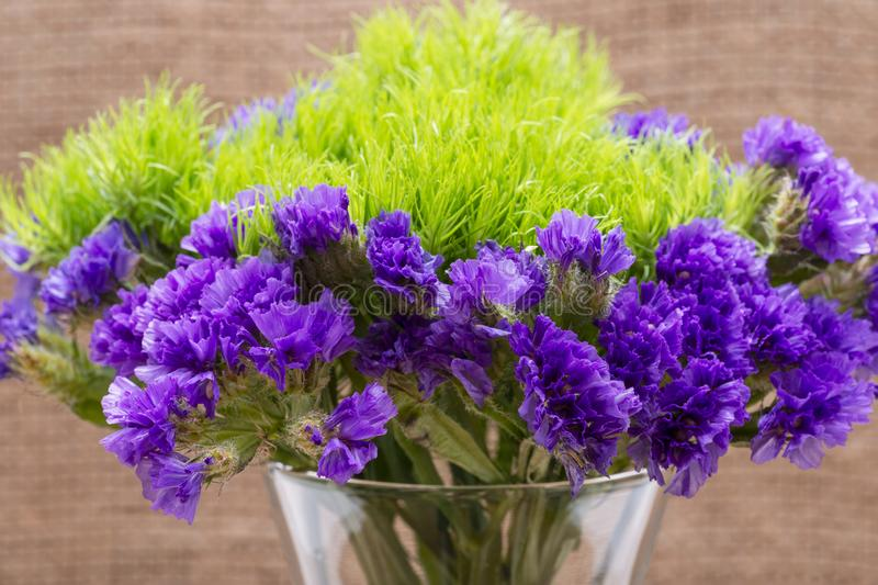 Green Ball Dianthus Barbatus Sweet William and Dark Purple Statice Limonium sinuatum Flowers  on natural burlap. Purple. And Green Bouquet Fillers stock image