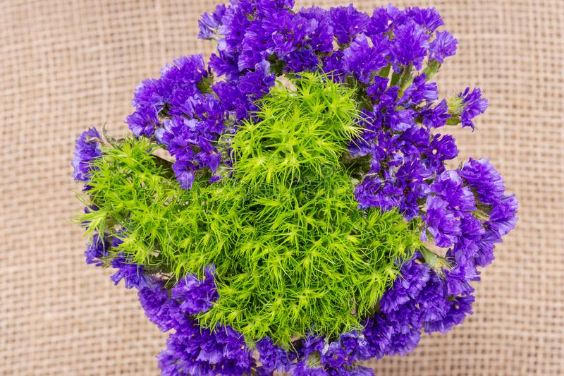 Green Ball Dianthus Barbatus Sweet William and Dark Purple Statice Limonium sinuatum Flowers  on natural burlap. Purple. And Green Bouquet Fillers royalty free stock image